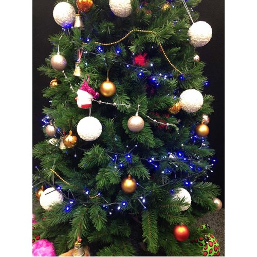 13M 100 LED Fairy Lights - Blue And White (Green Cable)